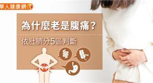 為什麼老是腹痛?依肚臍分5區判斷