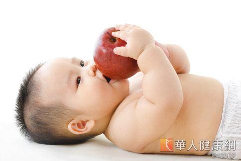 幼兒止腹瀉 蘋果山藥粥健脾化濕