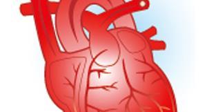 三片少一片?!二尖瓣型主動脈瓣要治療