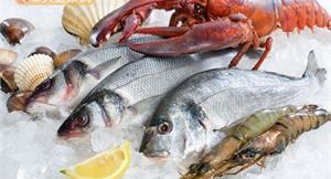 真的嗎?原來吃海鮮有助降低膽固醇!