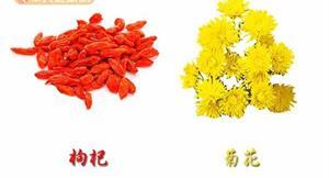防流感小偏方 吳明珠:菊花枸杞茶
