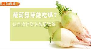 蘿蔔發芽能吃嗎?這些食物發芽後更營養