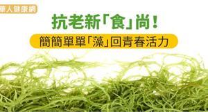 抗老新「食」尚!簡簡單單「藻」回青春活力