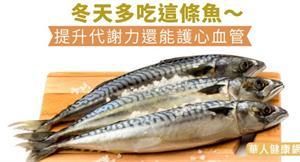 冬天多吃這條魚~提升代謝力還能護心血管