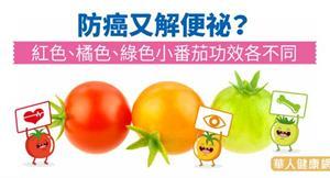 防癌又解便祕?紅色、橘色、綠色小番茄功效各不同