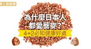 為什麼日本人都愛蕎麥?4+2必知健康好處