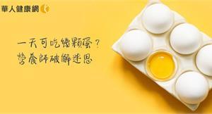 一天可吃幾顆蛋?你的答案很可能和營養師不一樣!