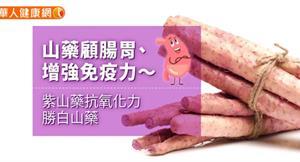 山藥顧腸胃、增強免疫力~紫山藥抗氧化力勝白山藥