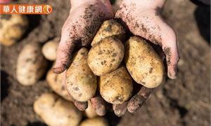 餐桌上的常客馬鈴薯帶皮吃 保留更多營養素