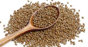 小小一顆用途多!決明子食養法報你知,搭綠茶、枸杞菊花茶都行