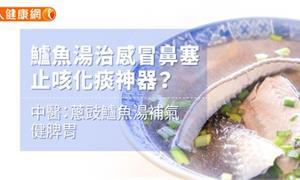 鱸魚湯治感冒鼻塞、止咳化痰神器?中醫:蔥豉鱸魚湯補氣、健脾胃
