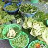 江守山專利保鮮 活蔬菜檢驗完再賣