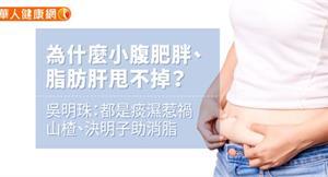 為什麼小腹肥胖、脂肪肝甩不掉?吳明珠:都是痰濕惹禍,山楂、決明子助消脂