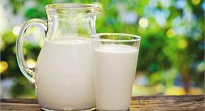 別鬧了!誰說低脂鮮乳沒有營養?一次破解低脂鮮乳的4大迷思