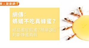 網傳:螞蟻不吃真蜂蜜?結晶蜜是假蜜?簡單3招判斷蜂蜜真假