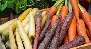 颱風季來臨,耐放蔬菜準備好了嗎?營養師公開應急首選,選對不怕壞、慢慢吃