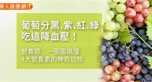 葡萄分黑、紫、紅、綠,吃這降血壓!營養師:一張圖搞懂4大營養素的神奇功效