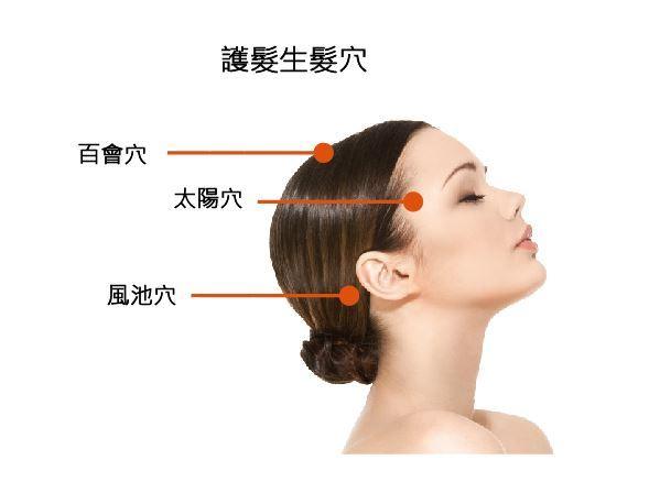 護髮生髮穴位圖(圖片提供/洪志鵬醫學博士)
