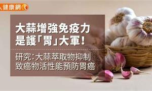 大蒜增強免疫力 是護「胃」大軍!研究:大蒜萃取物抑制致癌物活性能預防胃癌