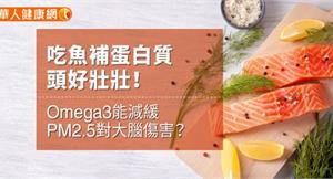 吃魚補蛋白質頭好壯壯!Omega3能減緩PM2.5對大腦傷害?
