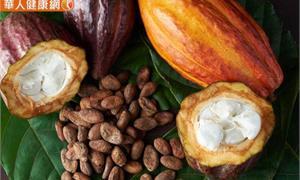 可可豆殼泡茶能提神?「食品原料可可豆殼之使用限制及標示規定」正式公告,5大Q&A一次看懂