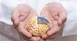破解阿茲海默症惡化關鍵!中研院研究揪出疾病惡化的蛋白質幫凶