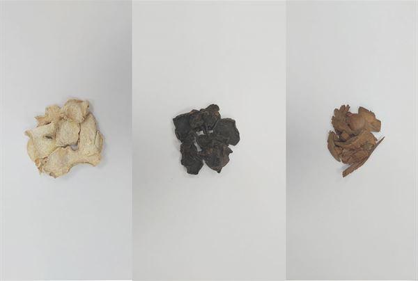 (左至右)中醫常用乾薑補脾、附子及肉桂補腎,達溫中散寒之效。(圖片/市聯醫提供)