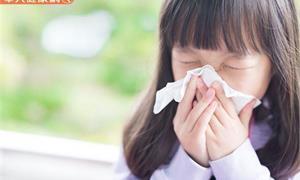 孩子鼻水總是「共共流」?過敏性鼻炎可以根治嗎?兒科醫師來解答