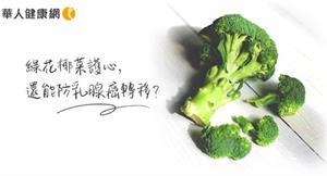 綠花椰菜護心,還是抗癌好幫手?研究:十字花科蔬菜防乳腺癌細胞增生與轉移