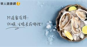 防疫要有「鋅」,吃出免疫力?牡蠣、蚵仔、生蠔含鋅豐富,一張表輕鬆分辨