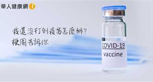 我還沒打到疫苗怎麼辦?閨密女醫推出「吉卜力防疫梗圖」,一次看懂