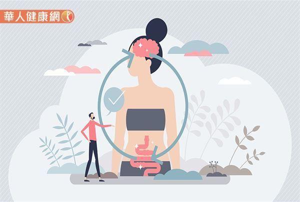 大腦及腸道是彼此互相影響的。而大腦與腸道是靠什麼聯絡?答案就是靠「腦腸軸」,也是扮演大腦與腸道兩者之間聯繫協調的網絡橋樑。