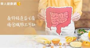 養好腸道益生菌、膳食纖維不可缺!助「腸腦軸線」平衡,腹瀉、便祕、憂鬱不再來