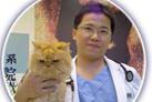 鄧炳池 醫師